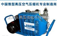 銷售國產潛水呼吸空壓機