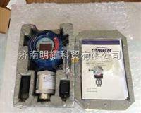 P66美国英思科固定式气体检测仪